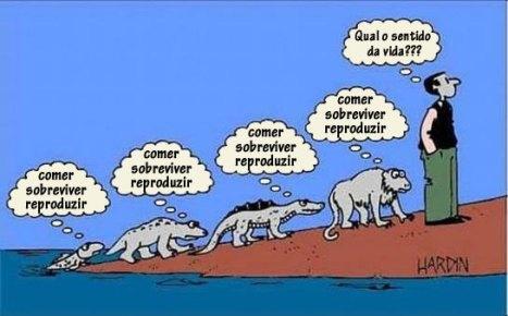sentido_da_vida_traduzido